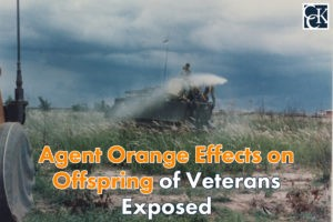 Agent Orange Effects on Offspring of Veterans Exposed