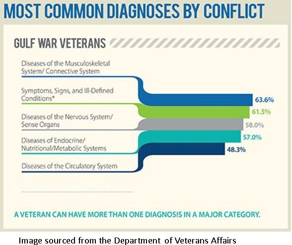 Gulf War Veterans