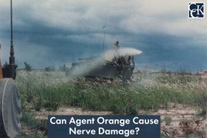 Can Agent Orange Cause Nerve Damage?